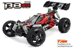 377-TM560011CH Auto 1/8 EP 4WD Buggy RTR 250